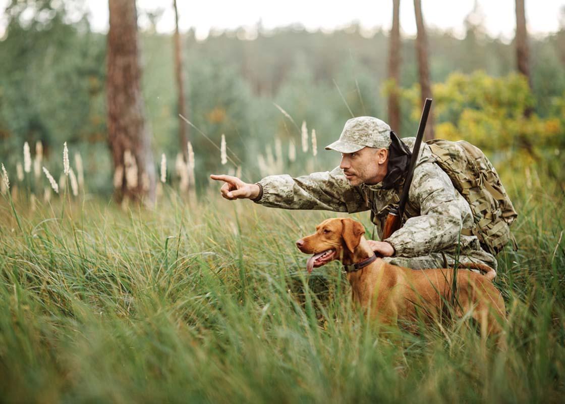 Hunt Expert - приманка для диких копытных животных в Рыльске