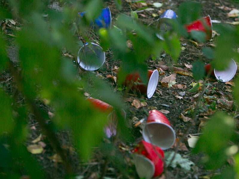 Empty and crushed Solo cups in a yard