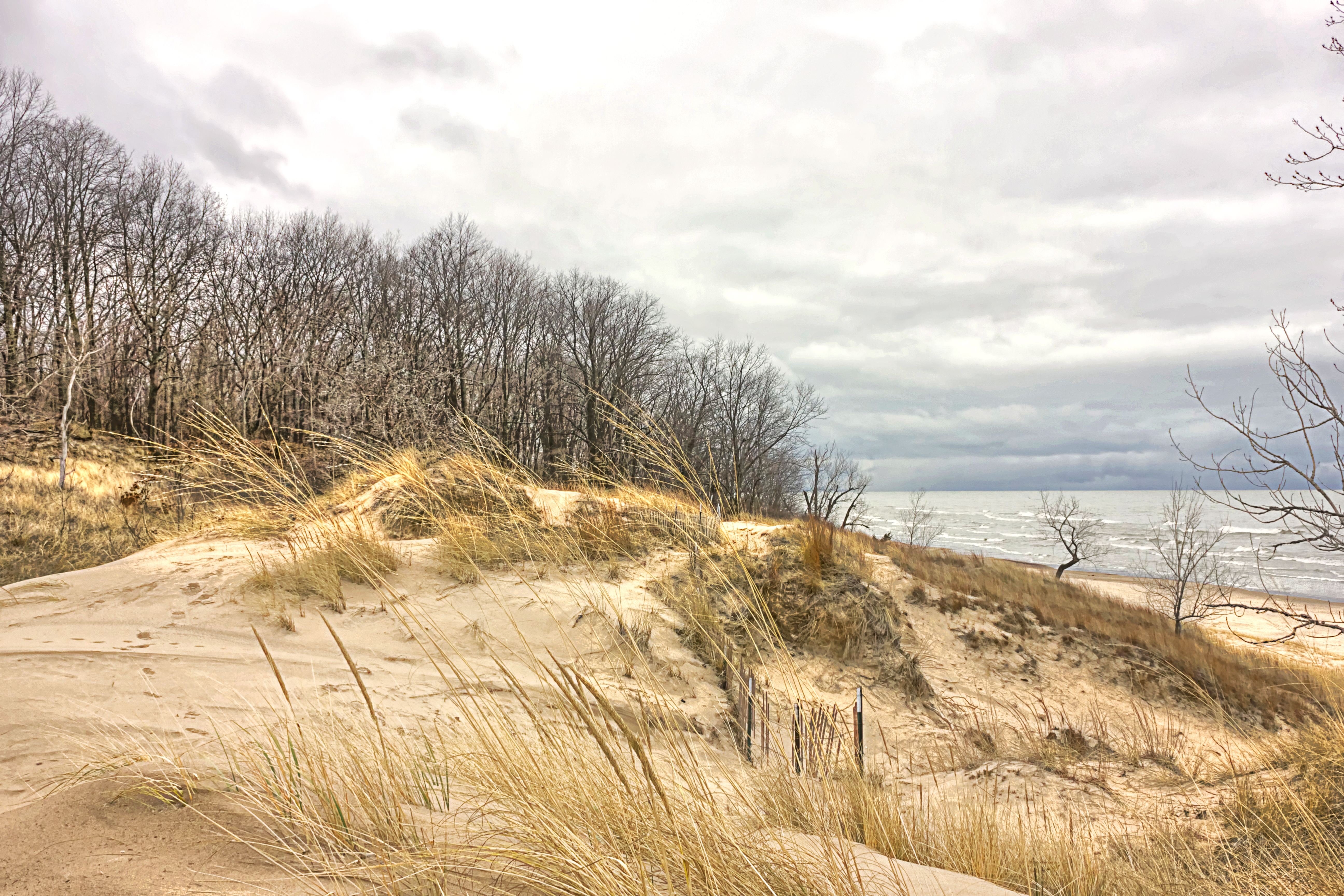 saugatuck dunes