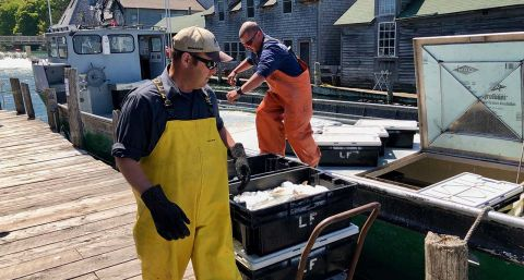 Commercial fishing is sinking fast in Michigan. Time for more regulations?