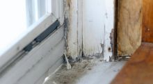 Michigan environment roundup: Lead paint enforcement spotty in Detroit